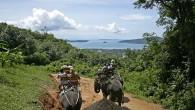 elephant-trekking-2